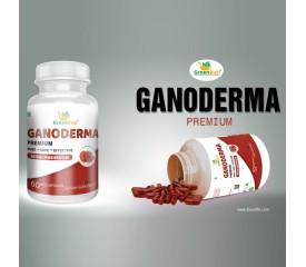 Ganoderma Premium